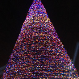 pcchristmastrees christmastrees freetoedit