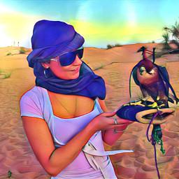 dubai desertsafari falcon holidays freetoedit