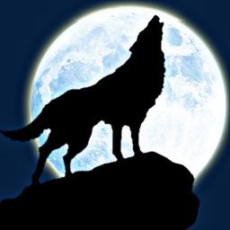 freetoedit wolferstudio lobo lobouivando wolf