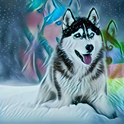 freetoedit glitch magic wolf