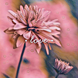 freetoedit flower pink mauve love