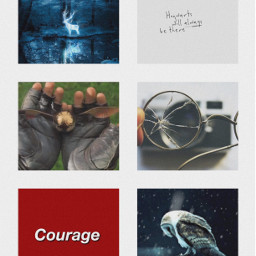harrypotter aesthetic harry potter stag freetoedit