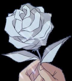 rose white drawing anime gül freetoedit