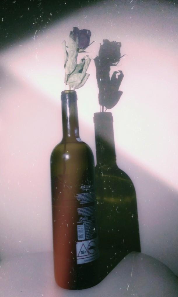 #freetoedit #gül #rose #şarap #wine #efect #retro #photo #fotoğraf  #photography #📸