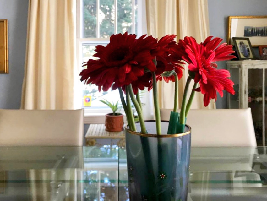 #window #red #flowers #interior  #home #freetoedit #pconthetable #onthetable