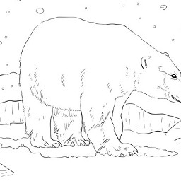 freetoedit dcpolarbear polarbear