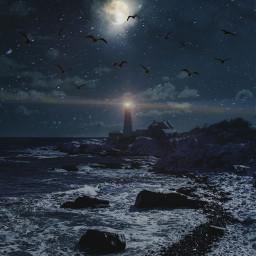 srcbirds birds freetoedit night lighthouse