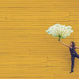 freetoedit flowers floating umbrella yellow