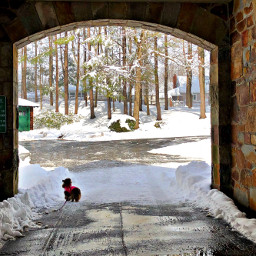 pcoutdoorwinter outdoorwinter winter arch passage pcsnow freetoedit