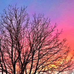 myphotography winter sky sunset beautiful pcpink