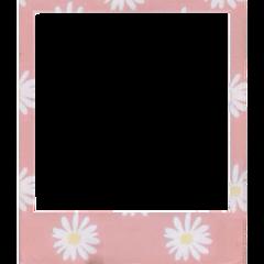 polaroid tumblr flowers flower pink freetoedit