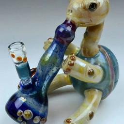 freetoedit turtle glassart glass art