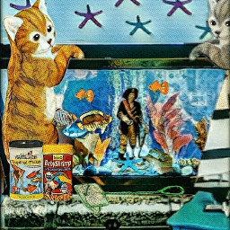 "kittys aquarium"" freetoedit ecunderwater underwater"