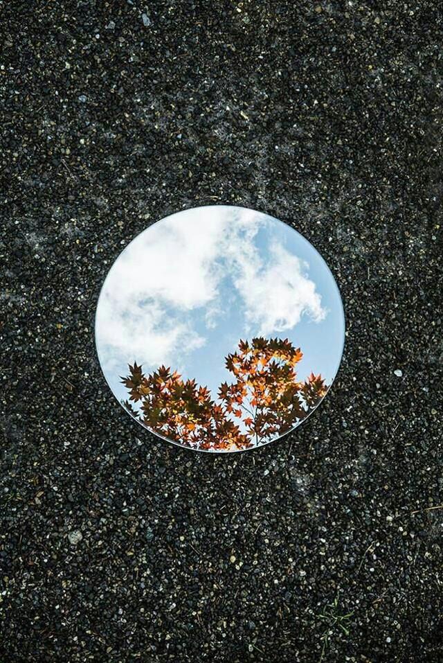#freetoedit #mirror #mirroreffect #photography