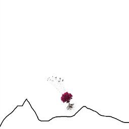 birds tree mountains