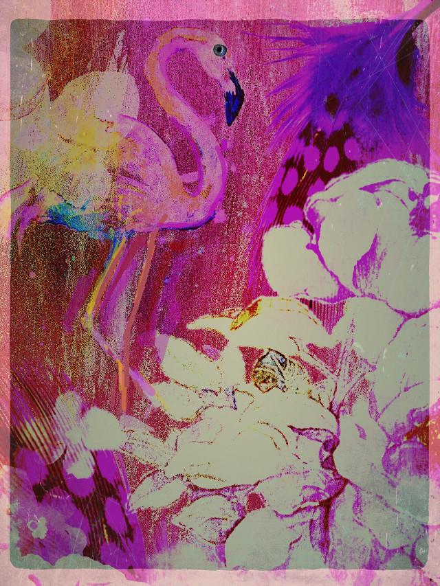 #freetoedit #flamingoFun #PinkFlamingo #Pinky #BirdParadise #PinkandPurple #IllustrationArt
