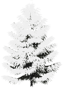 #tree #freetoedit