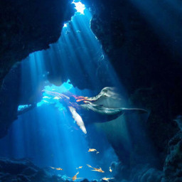 freetoedit sea fantasy fantastic fish