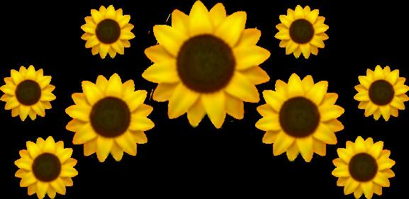 Emoji Girasol Crown Iphone Emojisticker Flower Flor Cor