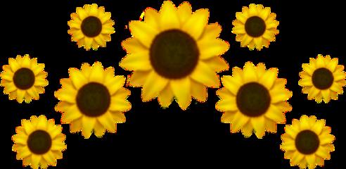 emoji girasol crown iphone emojisticker