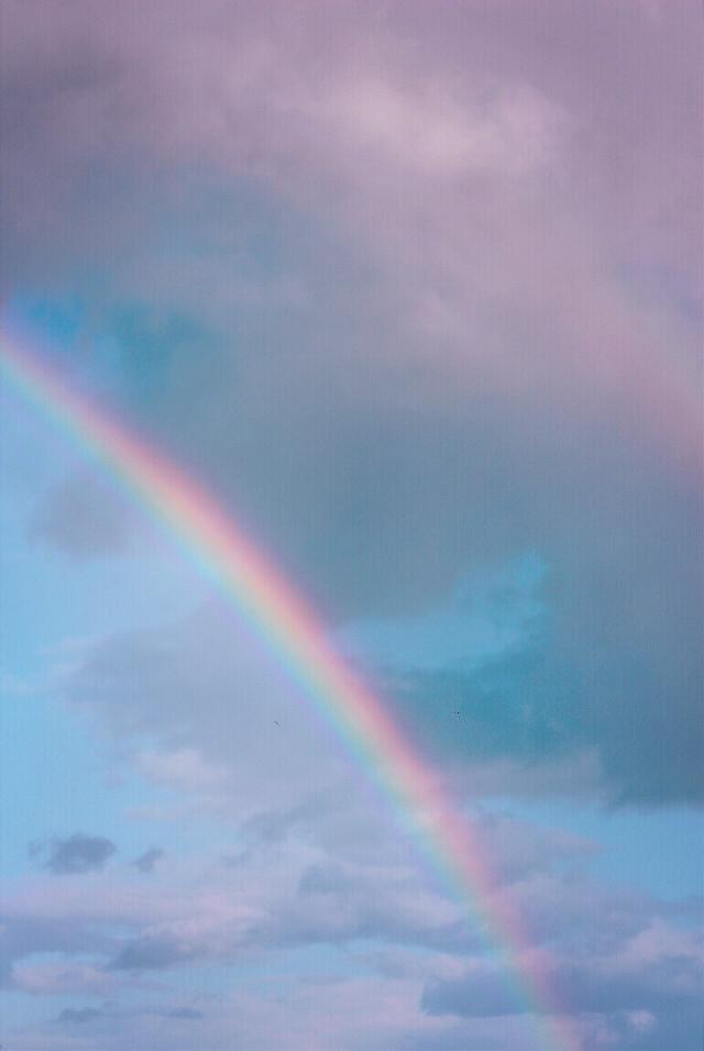 #freetoedit  #nature #skyandclouds #rainyclouds #rainbow #naturesbeauty #naturephotography