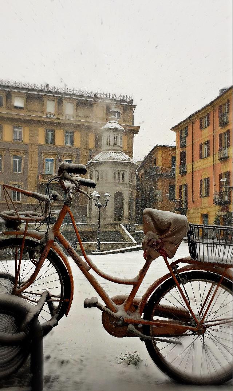Oggi Neve ❄️