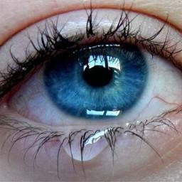 freetoedit background wallpaper eye blueeye