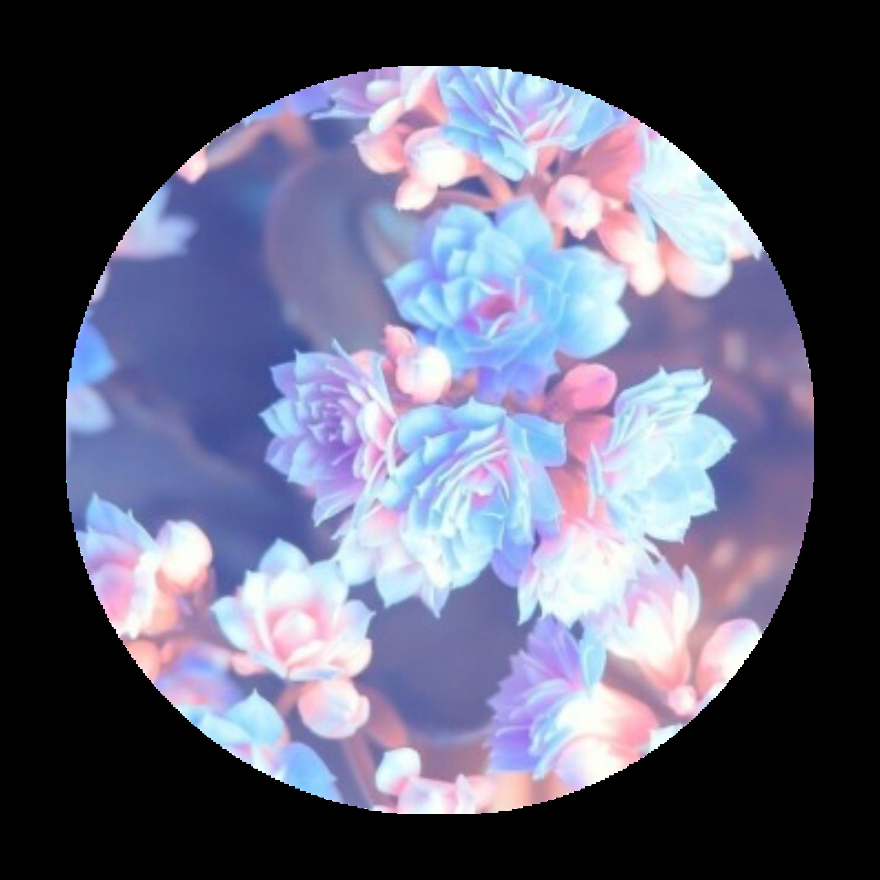 Flower Aesthetic Tumblr Roundobjects Circle Background