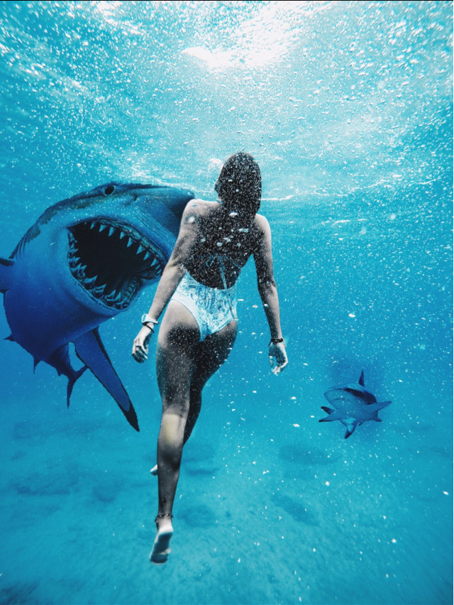 watch tutorials here👉 https://youtu.be/CDIEnk7cKL4                                                                 #doubleexposure #dtsdk #interesting #art @dtsdk @picsart #people  #nature #mega #blue #megalodon #shark #swiming  #meg   #seaside   #fish #sea   #freetoedit  #giant  #travel #artoftheday #photography
