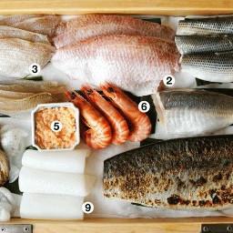 суши роллы кулинария еда тирасидзуси