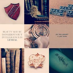 hermionegranger hermionegrangeraesthetic hermionegrangeredit potterheadforlife freetoedit