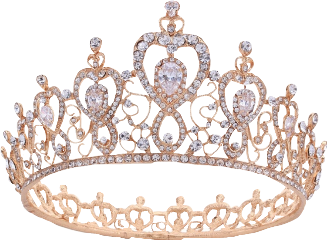 crown princess rosegold interesting homemade