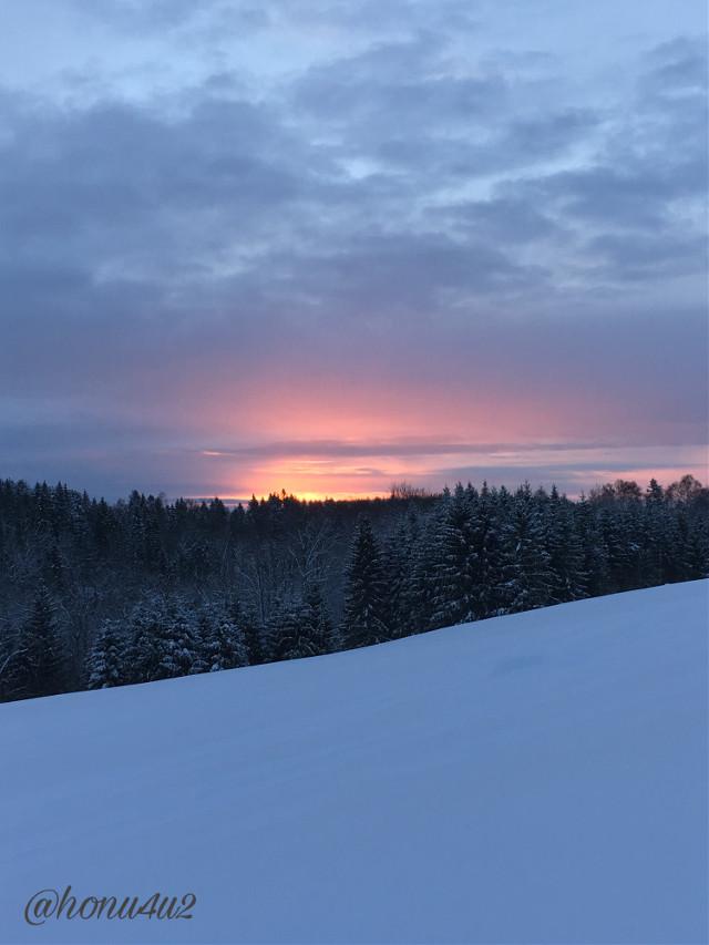 #interesting #nature #morningwalk #germanshepherds #hiking #winterwonderland #clouds #sun#colorful#sunrise#mydays💕#norway🇳🇴💕❄️