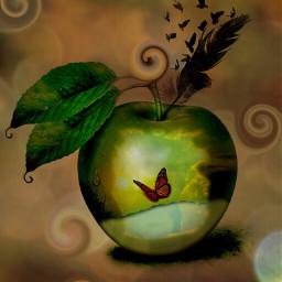 ecswirltool swirltool ecfunfruit funfruit