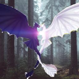 love dragon dragonlove freetoedit