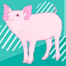 dcpinkpig pinkpig freetoedit myillustration pink