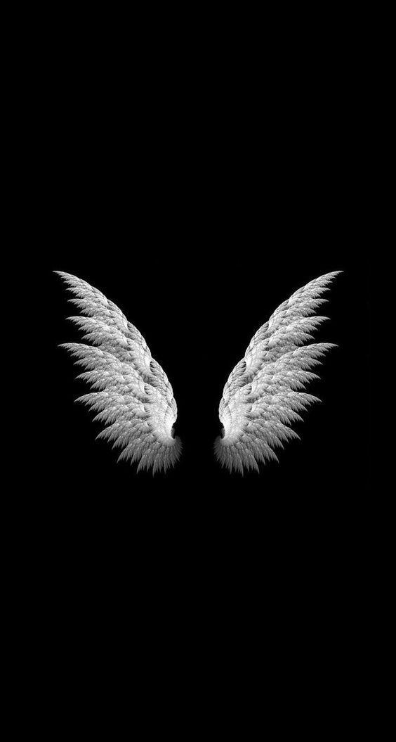 Freetoedit Wings Alas Black Blackandwhite Wallpaper Iph