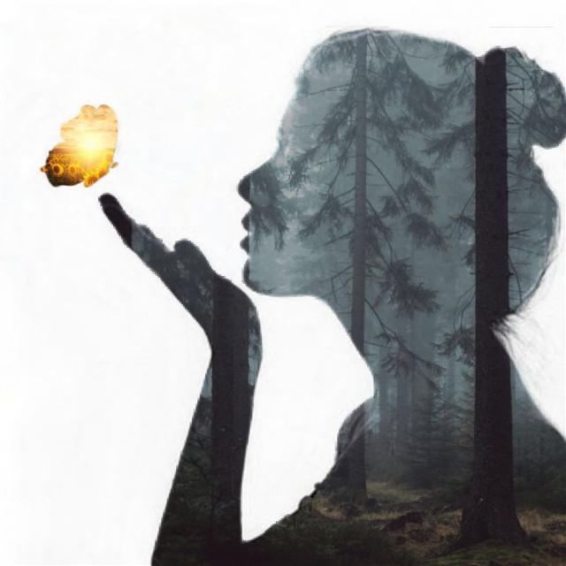 #freetoedit #person #siluette #silouhette #siluet #girl #propose #sideprofile #butterfly #forestgirl #forest #sun #sunflower #flower #girl