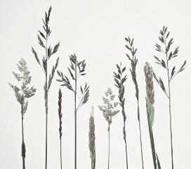 #catcuratedminimalism,#minimal,#minimalism