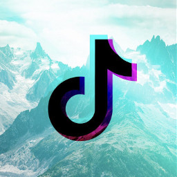 tiktok video follow freetoedit