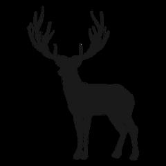 deer black stag shilouette silhouette freetoedit