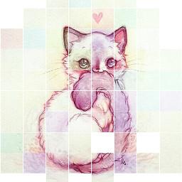 cute kittylover