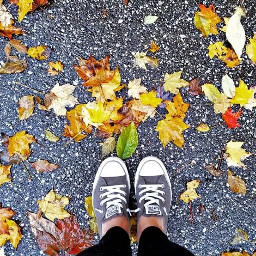 fall metroparks rainnyday pcfromwhereistand fromwhereistand