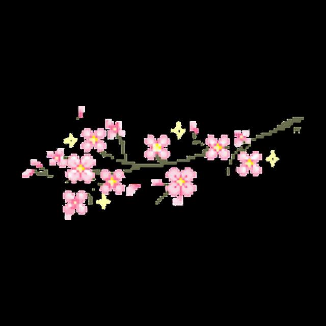 #petals #flowers #cherry #cherrytree #spring #japan #Anime #aesthetic #tumblr