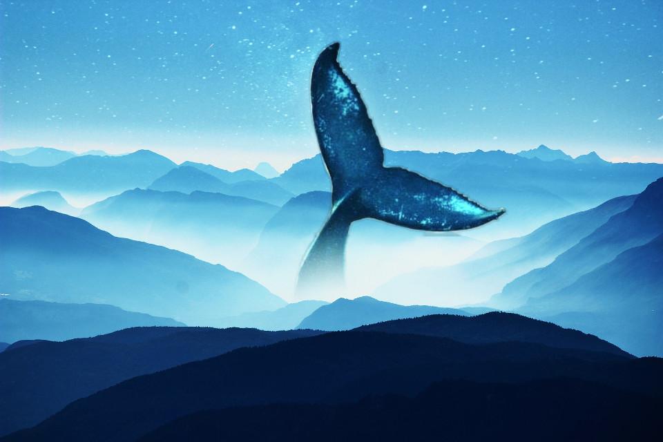 #freetoedit #whale #mountain #hills #blue #sky #stars #sunset #tale #silhouette #curve #picsart #remixit #edit #eyesofbrax #photoshop