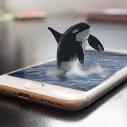 freetoedit whale savetheoceans 3deffect iphone
