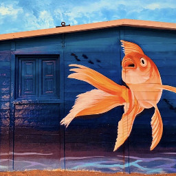 photography graffiti fish art freetoedit