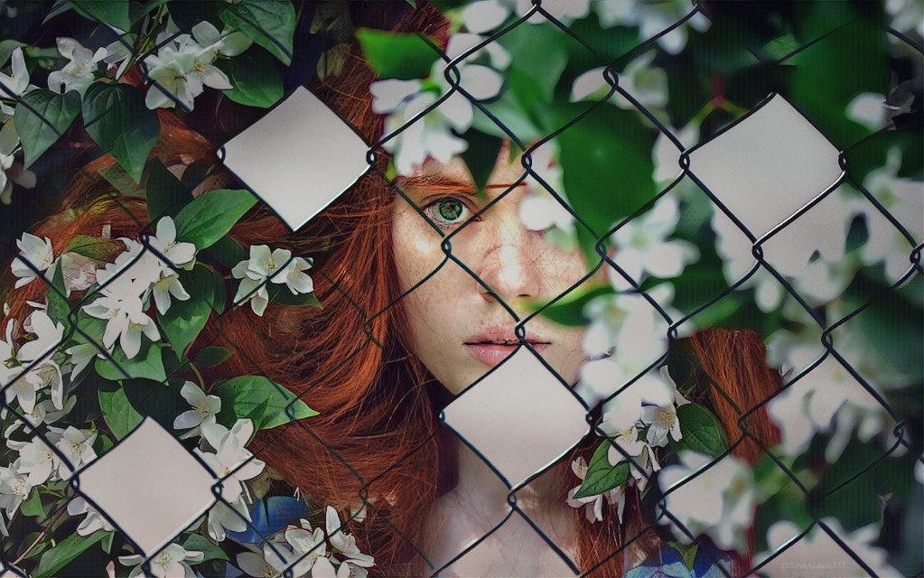 #surreal #fence #woman #flowers #myedit