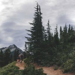 freetoedit mountains mountainlyfe mountain mountainair