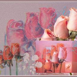 freetoedit rosesflower